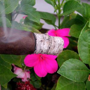 pio ash 1