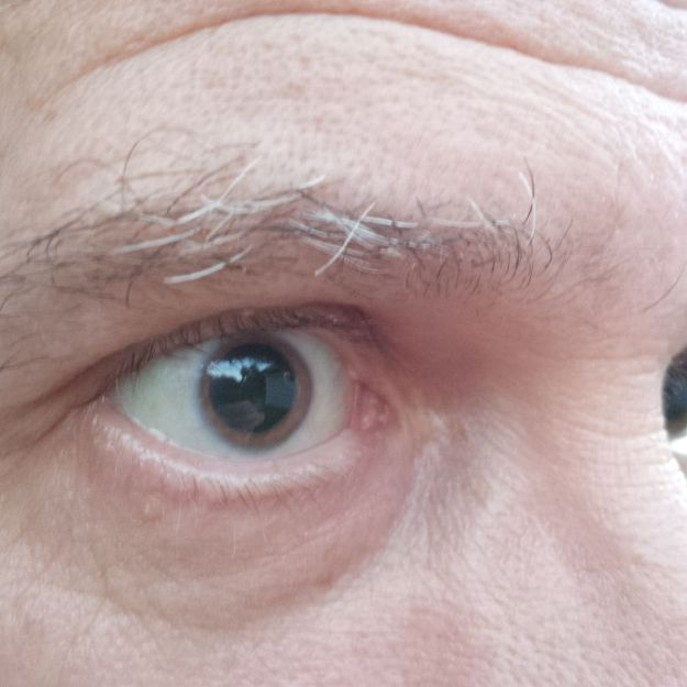 pauls-eye