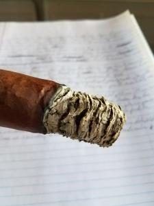 horacio ash