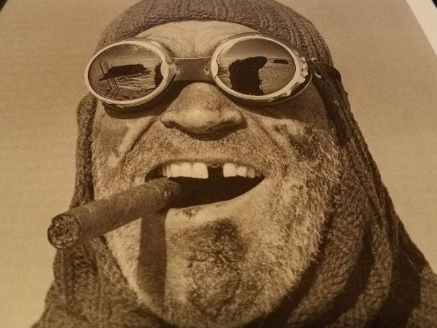arctic cigar